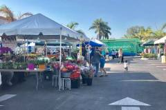 Farmers Market April 2017