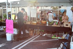 February 2017 Farmers Market